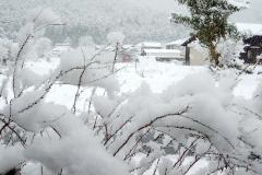 丹波の雪景色【2019年2月】