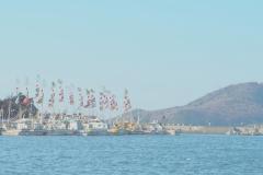 たつの市室津漁港の大漁旗【2019年1月】